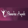 Paradise Angels Wemmel Logo